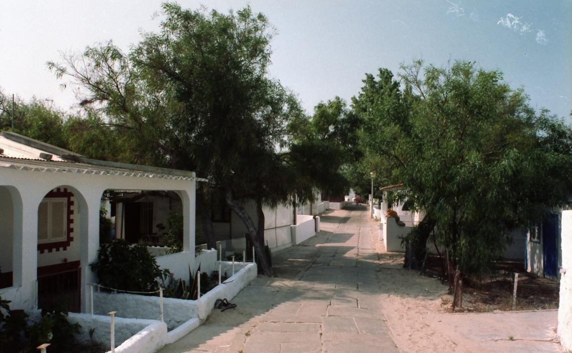 Portugal_Armona_Hauptweg